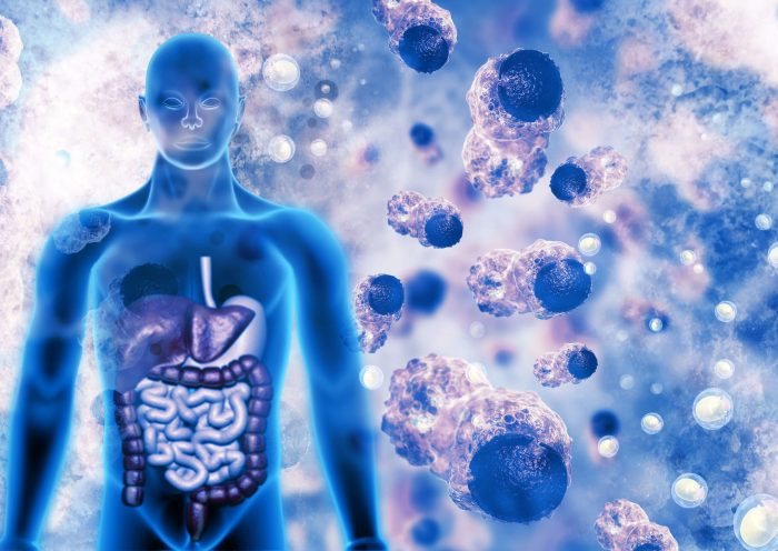 Toxins in the Body